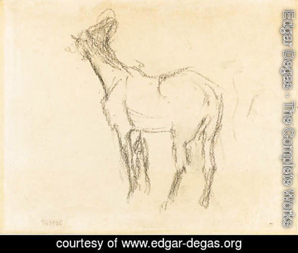 Edgar Degas - the first Study of a Horse raising his Head towards the Left